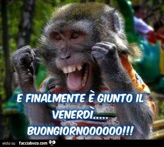 Topic ufficiale il topic del buongiorno page 357 for Immagini divertenti buongiorno venerdi