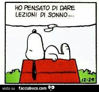 Snoopy Che Ha Sonno Powermall