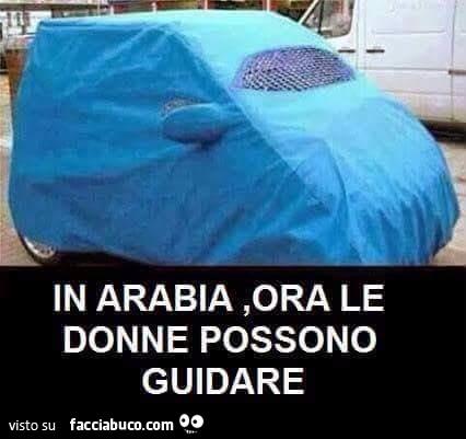 1gh5zvljo1-in-arabia-ora-le-donne-possono-guidare-un-passo-alla-volta-dopo-il-voto_a.jpg